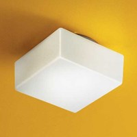 Illuminating Experiences Matrix Fluorescent Wall Or Ceiling Light