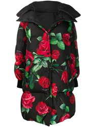 Dolce And Gabbana Rose Print Padded Coat Black
