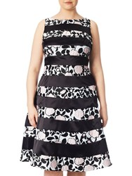 Adrianna Papell Plus Size Boat Neck Fit And Flare Dress Pink Black