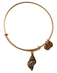 Alex And Ani Conch Shell Charm Bangle Bracelet Gold