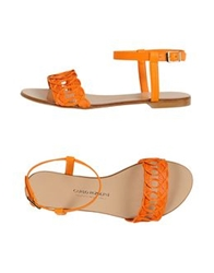 Carlo Pazolini Couture Sandals White