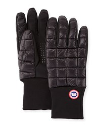 Canada Goose Northern Glove Liner Black