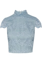 Alice Olivia Julia Cropped Lace Top Light Blue