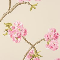 Nina Campbell Orchard Blossom Wallpaper Ncw4027 01