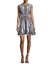 Rvn Cap Sleeve Lace Print Fit And Flare Dress