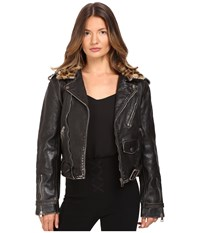 Just Cavalli Leather Moto Zip With Cat Accent Runway Jacket Black