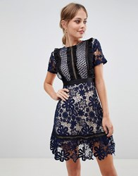 Liquorish Lace Mini Dress With Contrast Lining Navy