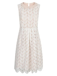 Hobbs Leaf Lace Dress Ivory