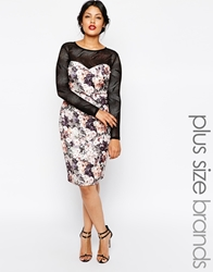 Lipstick Boutique Plus Floral Pencil With Mesh Sleeves Multi