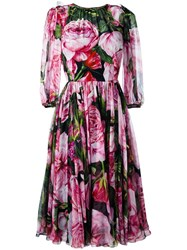 Dolce And Gabbana Rose Print Chiffon Dress Black