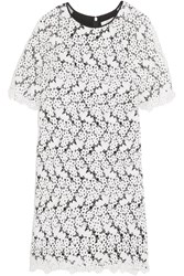 Erdem Aliya Guipure Lace And Chiffon Dress White