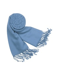 Forzieri Solid Pure Pashmina Fringed Shawl Powder Blue