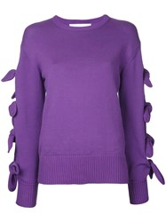 Le Ciel Bleu Tied Up Sleeves Jumper Pink Purple