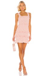 Parker Laurel Dress In Pink. Mini Wildflower