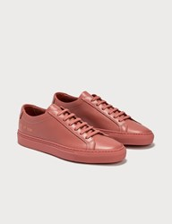 Common Projects Original Achilles Low Red