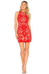 Endless Rose X Revolve High Neck Floral Crochet Dress Red