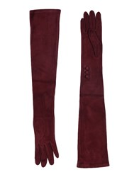 Dsquared2 Gloves Maroon