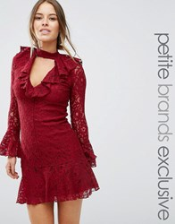 John Zack Petite High Neck All Over Lace Skater Dress With Layered Frill Hem Berry