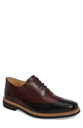 Anatomic And Co Pilar Wingtip Touch Burgundy Black