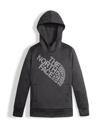 The North Face Surgent Pullover Hoodie Gray