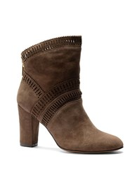 Isola Evoda Lasercut Suede Ankle Boots Grey