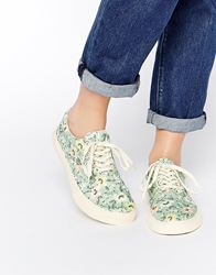 Ymc Floral Lace Up Plimsolls Green