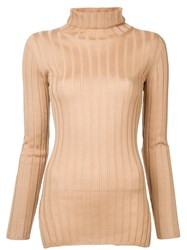Cityshop Ribbed Turtle Neck Sweater Brown