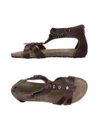 Cafe'noir Cafenoir Sandals Dark Brown