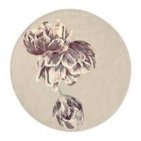 Ted Baker Tranquility Round Rug 150Cm Beige