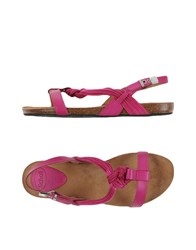 Scholl Footwear Sandals Women Fuchsia