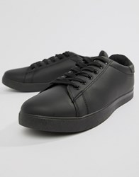 Loyalty And Faith Kenley Plimsolls In Black