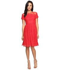 Maggy London Bavarian Leaf Lace Fit And Flare Dress Rose Trellis Women's Dress Red