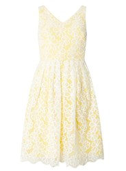 Dorothy Perkins Petite Yellow Daisy Prom Dress