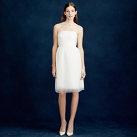 J.Crew Amelia Strapless Dress In Flocked Tulle