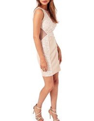 Miss Selfridge Lace Placement Bodycon Dress Cream