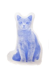 Areaware Shorthair Cat Mini Cushion