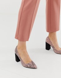 Blink Pointed Block Heeled Shoes In Snake Beige