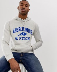 Abercrombie And Fitch Athletic Club Logo Hoodie In Grey