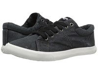 Rocket Dog Campo Black Beach Canvas Women's Lace Up Casual Shoes