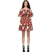 Dolce And Gabbana Multicolor Anemone Ruffle Dress