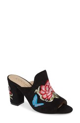 Coconuts By Matisse Frill Embroidered Mule Black Suede
