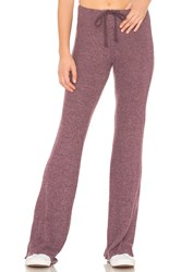 Wildfox Couture Tennis Club Pant Purple