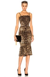 Dolce And Gabbana Cady Stretch Leopard Print Dress In Animal Print Brown Neutrals Animal Print Brown Neutrals