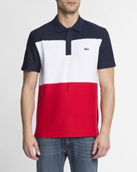 Lacoste Blue White And Red Regular Fit Cotton Polo Multicolour