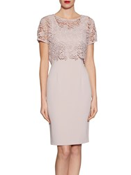 Gina Bacconi Crepe Dress With Primrose Guipure Top Ballet Pink