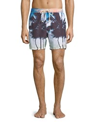 Sol Angeles Off Tropic Palm Tree Swim Trunks Multi