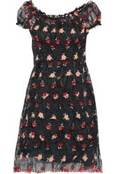 Anna Sui Embroidered Crinkled Organza Dress Black