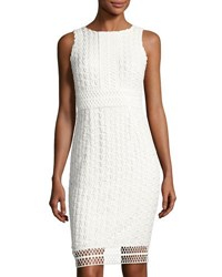 Tahari By Arthur S. Levine Sleeveless Chemical Lace Dress Ivory