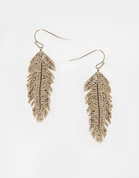 Oasis Feather Drop Earrings Gold