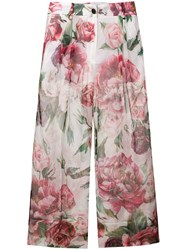 Dolce And Gabbana Peonies Print Cropped Trousers White